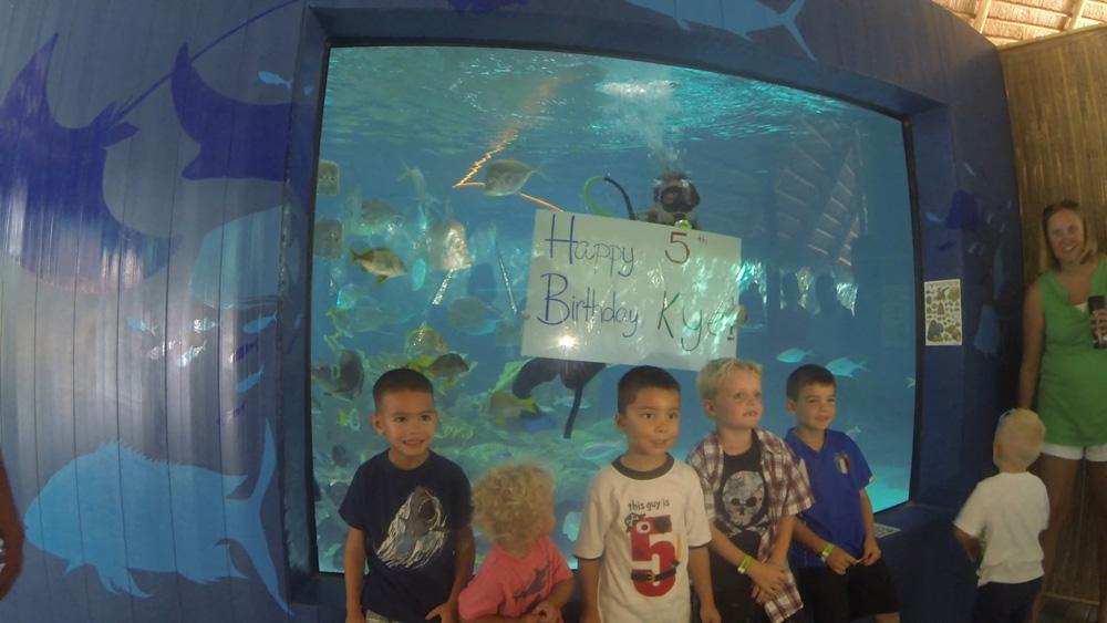 Florida Keys Aquarium Encounters Party Time At Aquarium