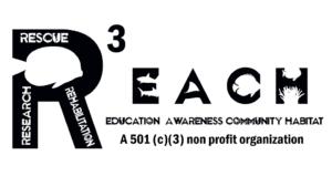 Reach big R 2019 logo edit